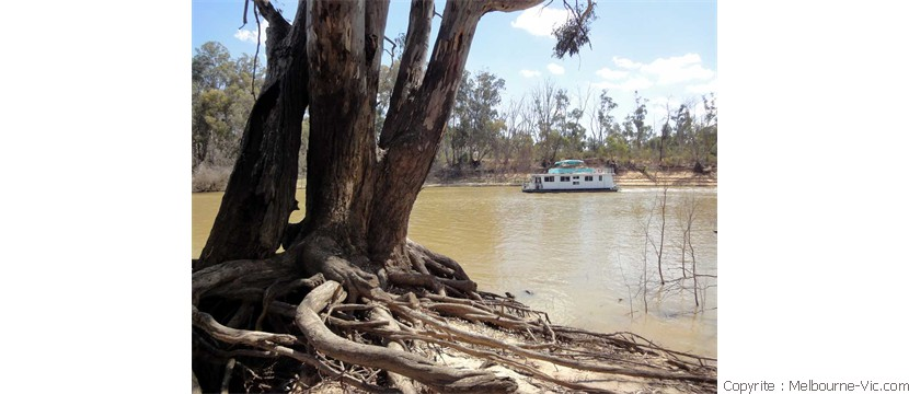 Murray River-Echuca