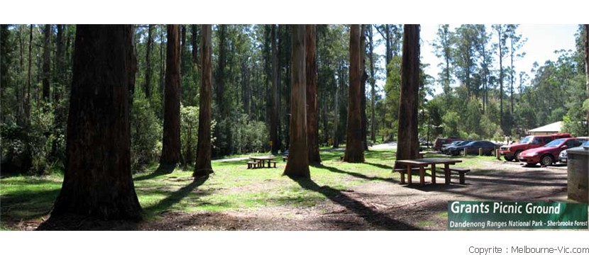 Grants Picnic Ground-Kallista