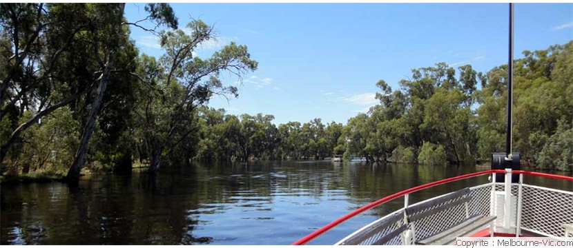 Murray River-SwanHill